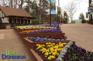 New, very large flower bed on the pathway leading up to the entrance.