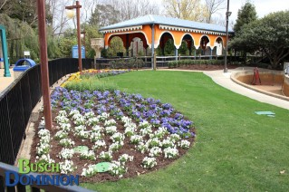 New landscaped area in front of Roman Rapids